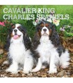Cavalier King Charles calendrier 2021